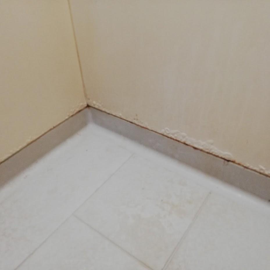 浴室塩ビ鋼板壁の錆腐り腐食