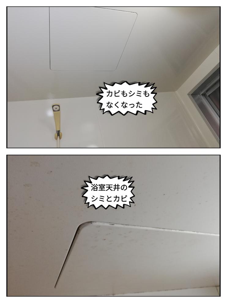 浴室天井カビ、染み@碧南市